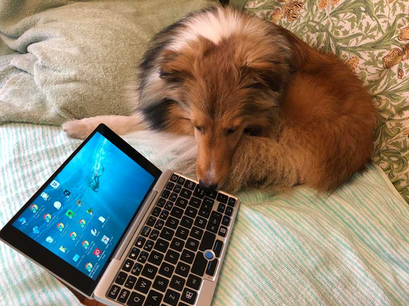 なんだこの小さなパソコンは?